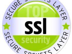مفهوم SSL + آموزش طراحی سایت + فناوری اطلاعات زیفا