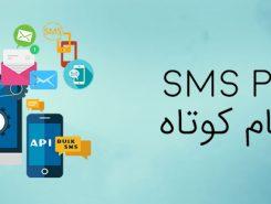 کاربرد پنل پیام کوتاه در بیمه + پنل پیام کوتاه + فناوری اطلاعات زیفا