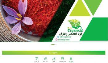 طراحی فروشگاه اینترنتی ارگانیک لیوینگ